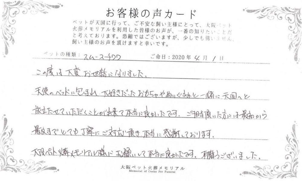 大阪ペット火葬メモリアルお客様の声7